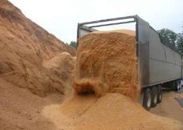 Transport cereale vrac pe bene