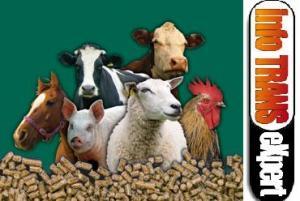 Utilaj pentru granulare hrana iepuri