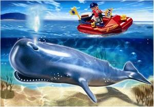 Cercetator in barca si balena