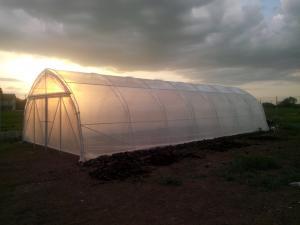 Solarii agricole legume flori