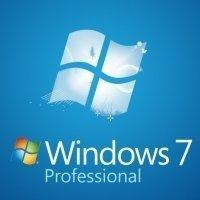 Windows professional