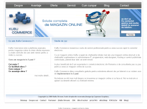 Magazin virtual magazin electronic
