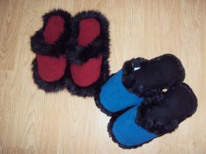 Papucii de casa