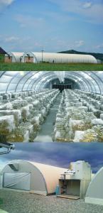 Compost pentru ciuperci