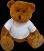 Promotie: Ursulet plus cu tricou personalizat